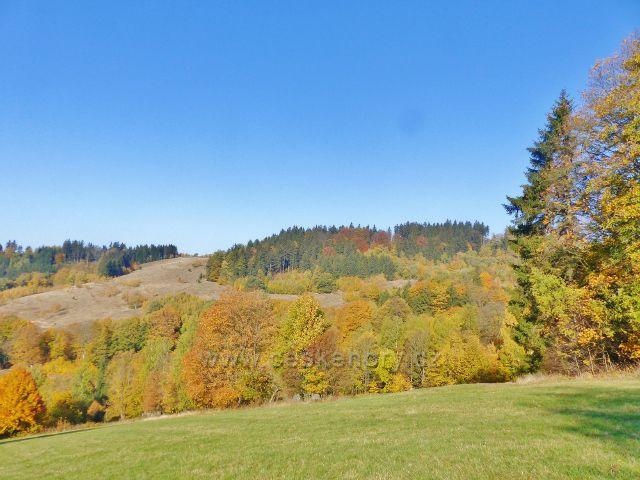 Petrovičky - podzim na svazích Mladkovské vrchoviny