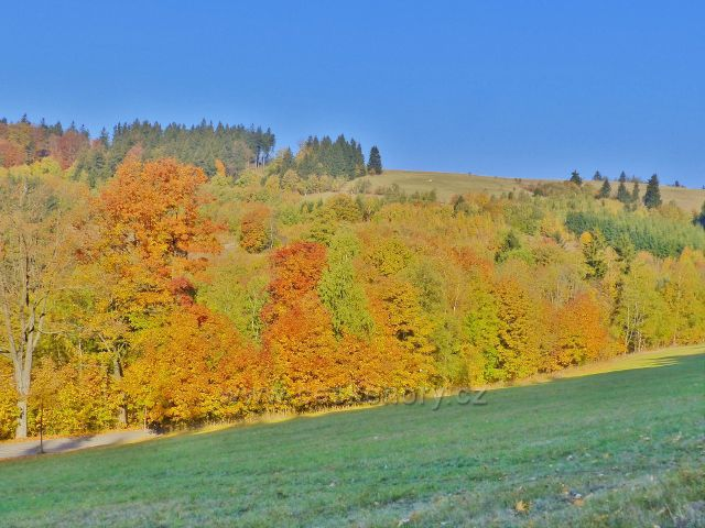Petrovičky - barevný podzim nad obcí