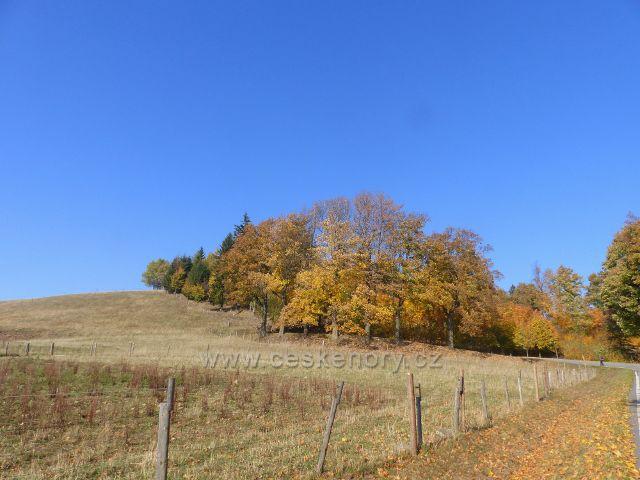 Petrovičky - pastvina nad hraničním přechodem do Polska