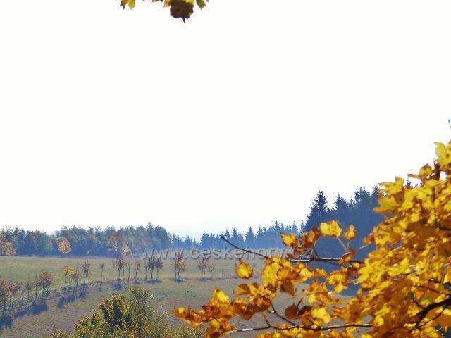 Petrovičky - vrcholová partie Předního hraničního vrchu (722 m.n.m.)