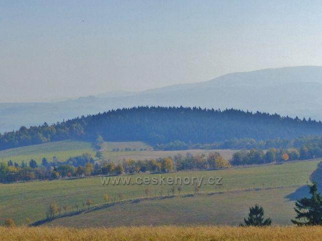 Petrovičky - pohled na úbočí Předního a Zadní hraniční vrch( 712 m.n.m.), v pozadí část masívu Králického Sněžníku