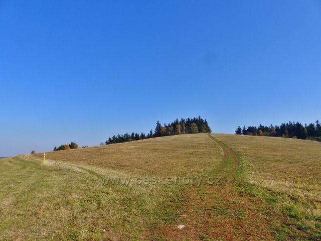 Petrovičky - neznačená  hřebenovka po pastvině od Kašparovy chaty, vlevo značená trasa vrstevnicové cesty po červené TZ