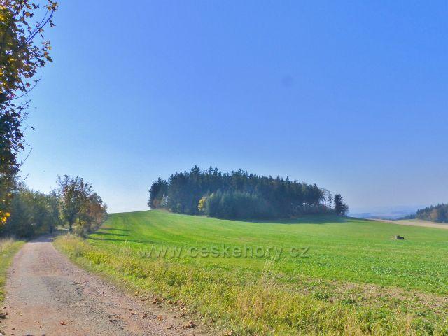 Vlčkovice - lesní porost kolem kóty 686 pod proti Kostelnímu vrchu