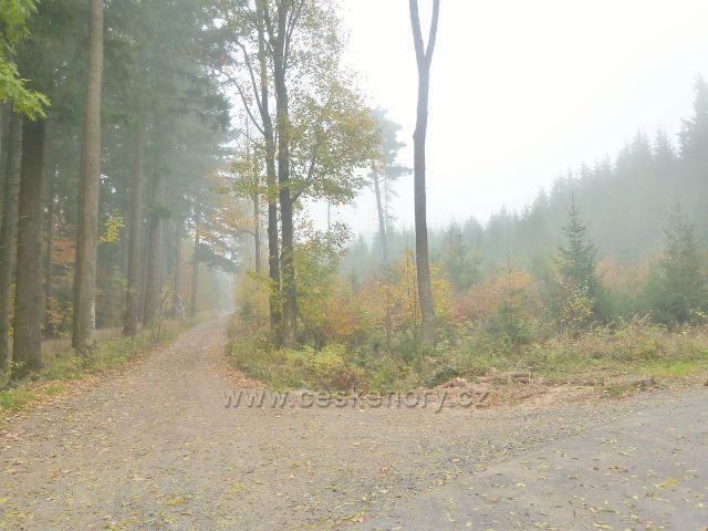 Lichkov - mlha na rozcestí na úpatí vrchu Bouda
