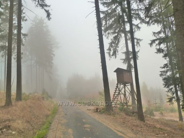 Lichkov - posed u Mladkovské bunkrovky na úbočí vrchu Bouda