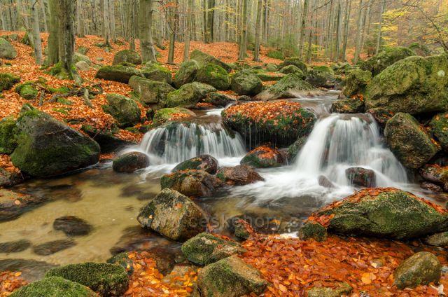 Říčka Smědá v podzimních barvách.