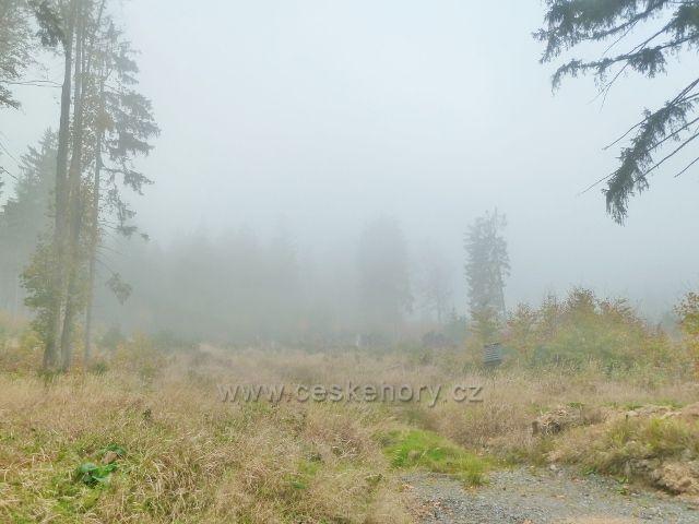 Lichkov - mlha na úbočí vrchu Vysoký kámen