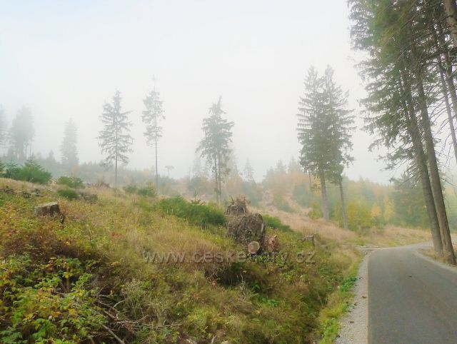 Lichkov - Mladkovská bunkrovka na úbočí vrchu Vysoký kámen