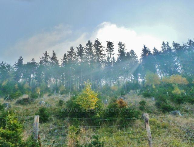 Mladkov - sluneční paprsky prorážejí mlhu na úbočí vrchu Vysoký kámen