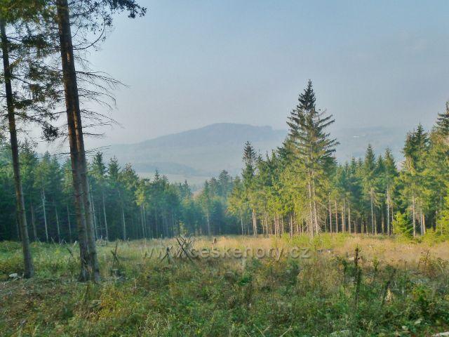 Mladkov - pohled z trasy NS Betonová hranice (po červené TZ) k vrchu Studený