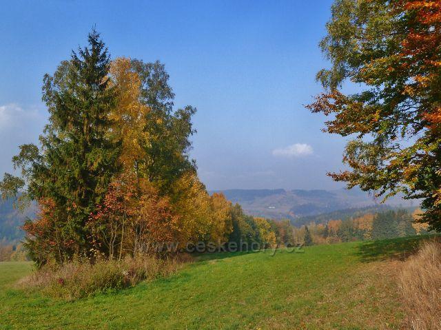 Mladkov - pohled od bývalé lesní školky k Zadnímu hraničnímu vrchu