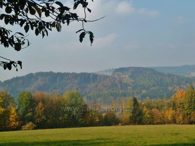 Mladkov - pohled od bývalé lesní školky na Šibeniční vrch(607 m.n.m.) nad Celným