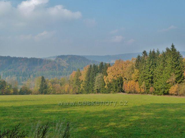 Mladkov - pohled od bývalé lesní školky k Mladkovské vrchovině