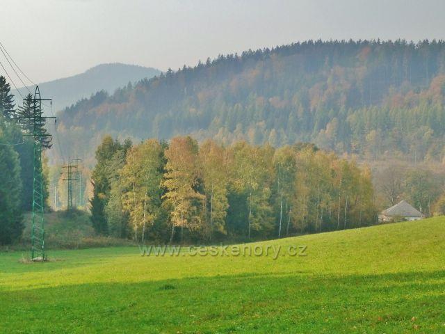 Mladkov - pastvina nad železniční stanicí. V pozadí Šibeniční vrch a vrch Studený