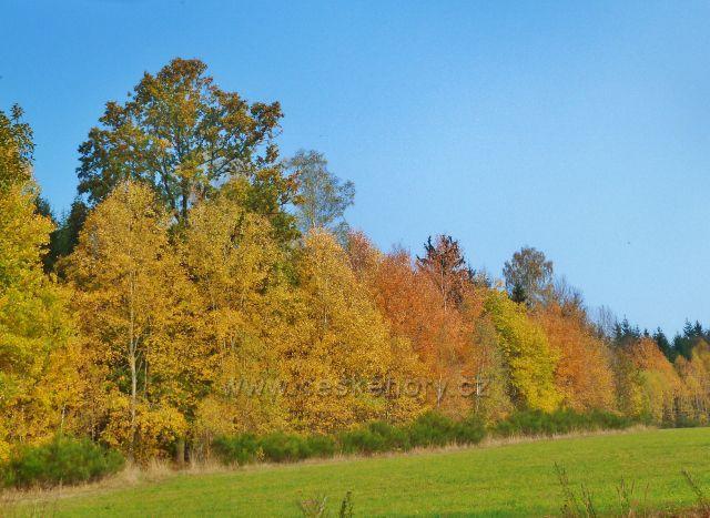 Mladkov - barvy podzimu nad železniční stanicí