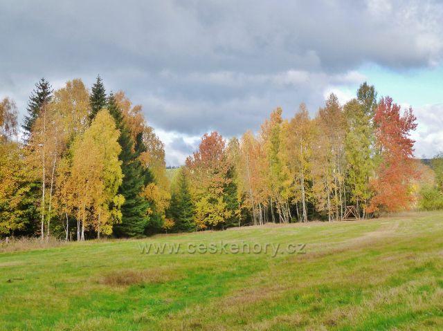 Horní Orlice - barvy podzimu na úpatí vrchu Jeřáb