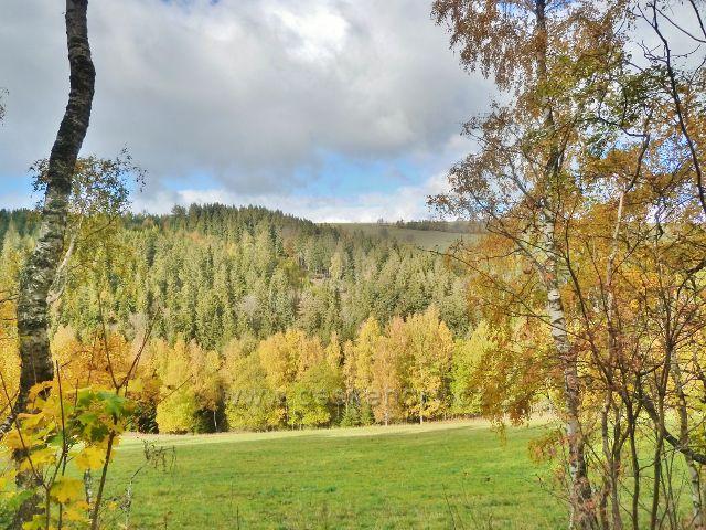 Zlatý Potok - úbočí vrchu Val nad Zlatým Potokem