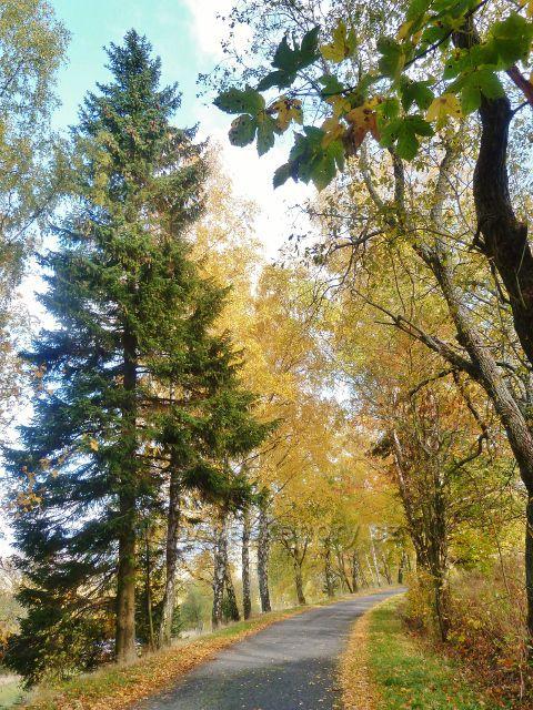 Zlatý Potok - silnice z Horní Orlice do Zlatého Potoka
