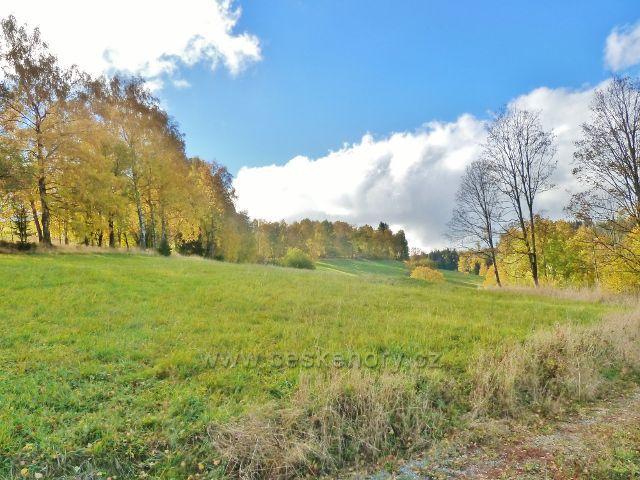 Zlatý Potok - pohled na pastviny pod silnicí z Horní Orlice