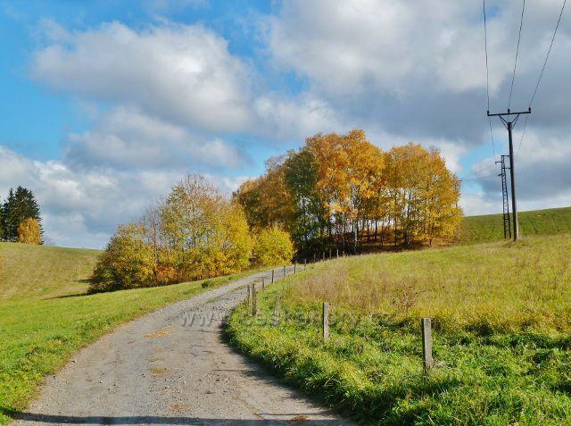 Zlatý Potok - polní cesta do Vysokého potoka