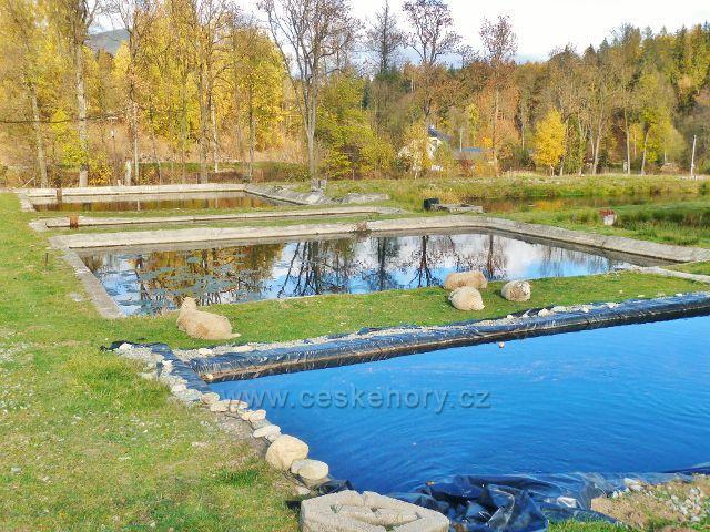 Malá Morava - pstruhové sádky