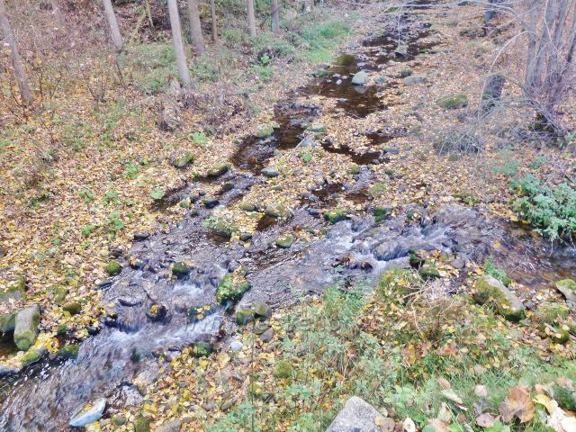 Malá Morava - vyústění potoka Malá Morava do řeky Moravy