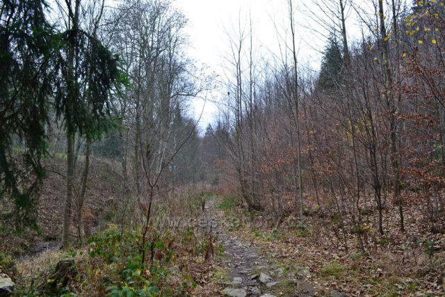 Slezská cesta směrem do Velké kotliny