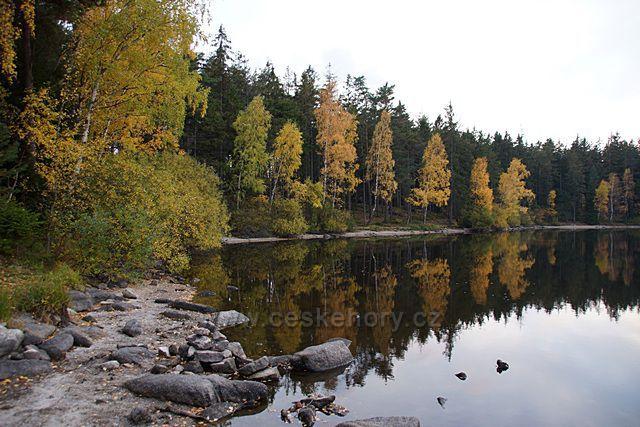 Jezero v lese