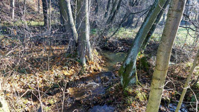 Potok Husí krk (Řetovka)