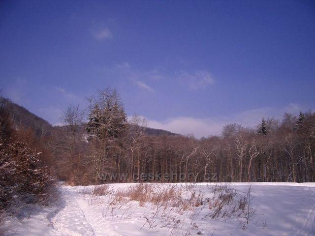 Prunéřovské údolí