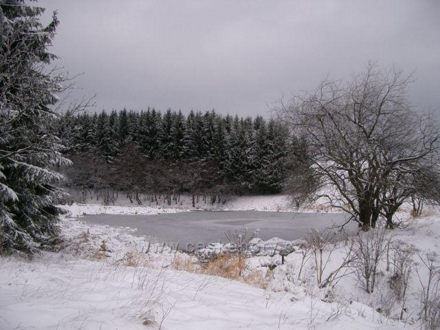 Nová Ves - rybník nad vsí