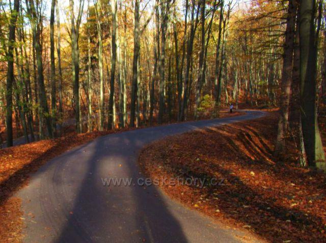 cesta buchlovskýmo horami k Cimburku