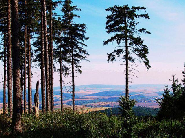 výhled na Buchlovské hory