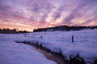 Svítání nad Hamerským potokem