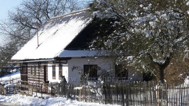 Černovír