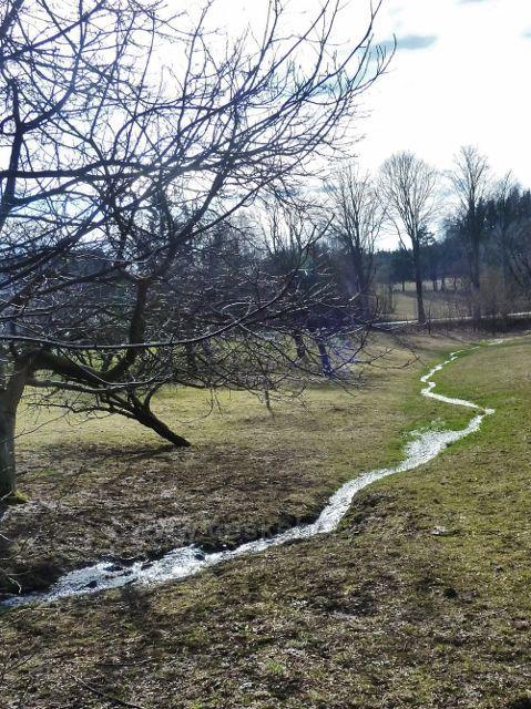 Vlčkovice - jarní potůček