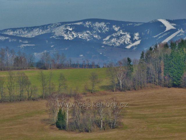 Pohled z úbočí Studeného k pásmu Králického Sněžníku