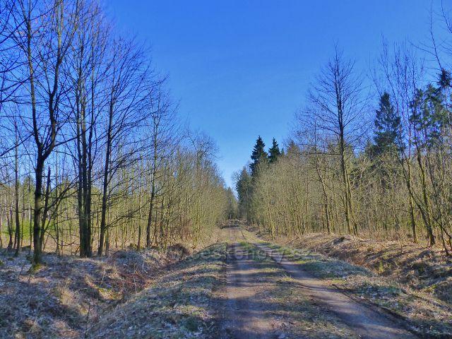 Dlouhoňovice - cesta v Mostiskách