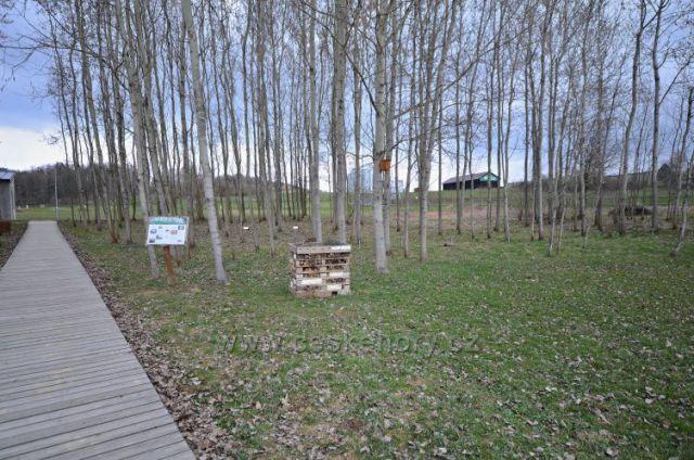 Bylinková zahrada a arboretum