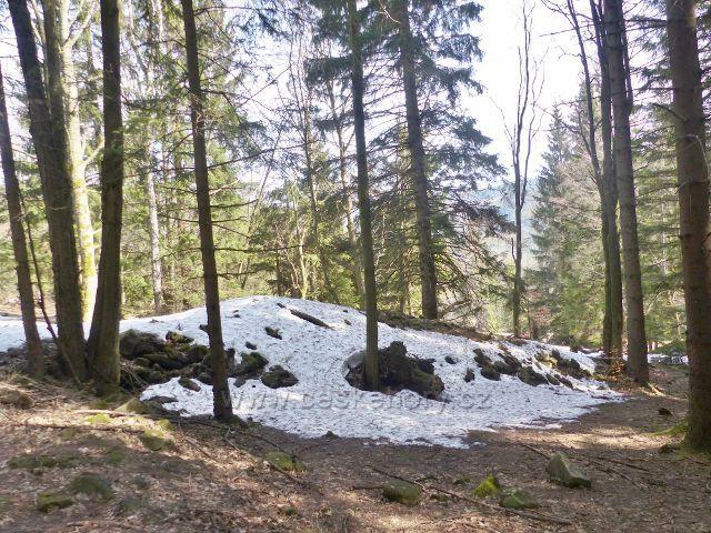 """Sklené - """"Zemědělské"""" hromady kamenů jsou svědky důsledného využívání půdy v minulosti"""