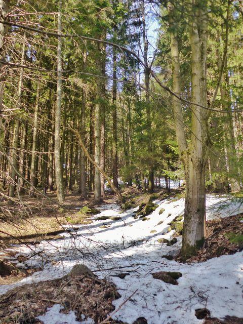 """Sklené - """"Zemědělské"""" hromady tvoří často i řady dlouhé několik desítek metrů"""