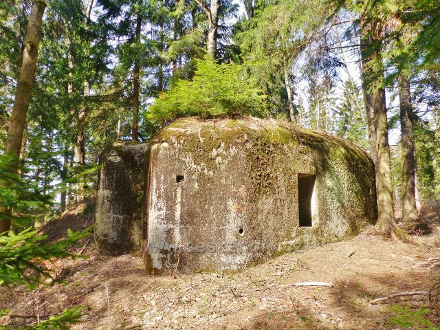 """Dolní Morava - jeden z několika """"řopíků"""" na úbočí Chlumu náleží k pásmu Králické pevnostní oblasti v lokalitě Louky"""