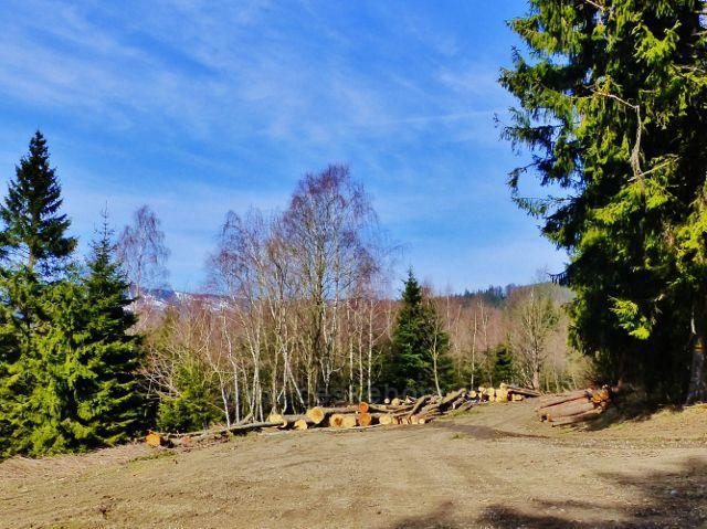 Dolní Morava - sedélko v lokalitě Louky mezi Chlumem a Maliníkem