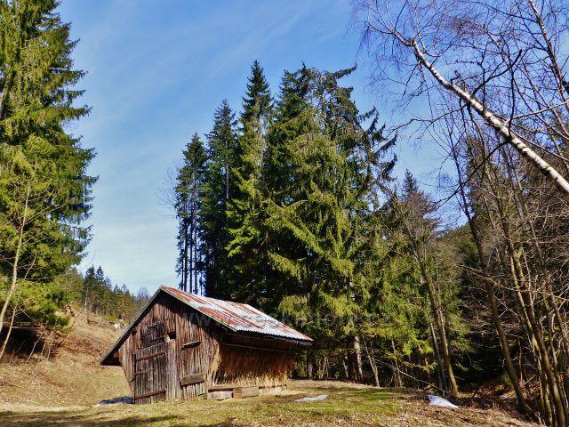 Dolní Morava - krmelec pro vysokou zvěř u lesní silničky na Dolní Moravu