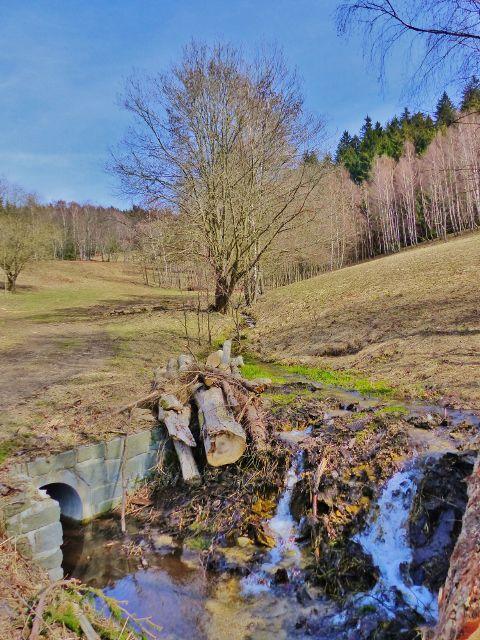 Doilní Morava - Mlýnský potok sbírá jarní vody z přilehlých strání