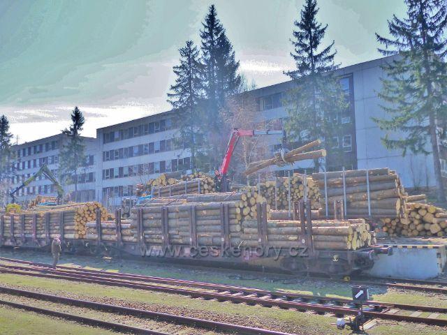 Rokytnice v Orlických horách - nakládka dřeva z lesů Orlických hor na vagony
