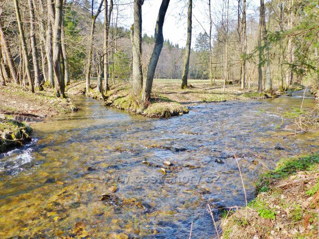 Soutok potoka Suchá s Rokytenkou