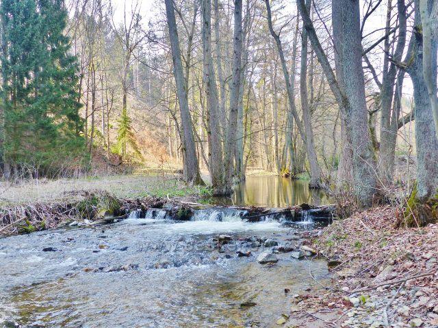 Splav na Rokytence u Kunvaldského rybníku