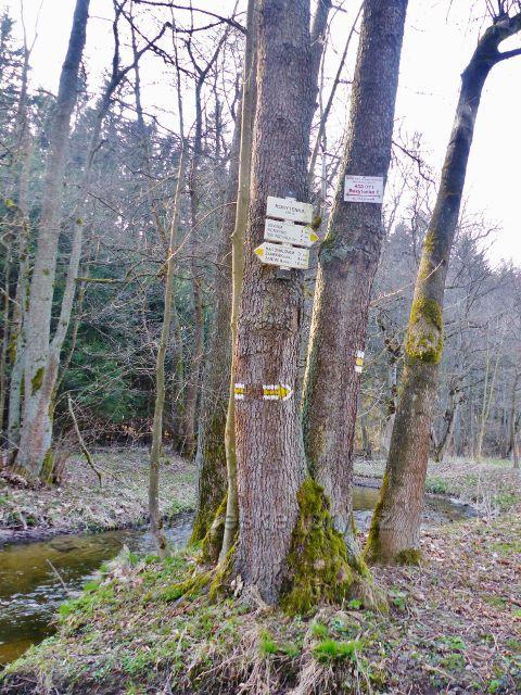 """Turistický rozcestník v údolí Rokytenky na žluté TZ """"Rokytenka, 450 m.n.m."""""""