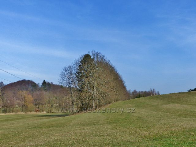 Pohled z údolí Rokytenky na Krejsův kopec (497 m.n.m.)